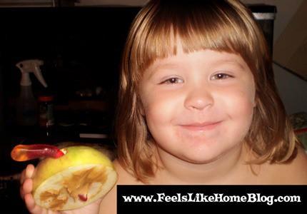Grace's wormy apple snack