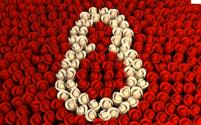 Journée Internationale de la Femme le 8 mars – Petit Historique