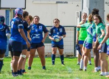 rugby-montpellier-mignot-09-2016