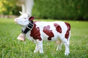 Petite vache avec cloche