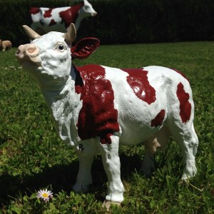 Petite vache sans cloche