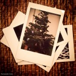 Making Christmas Memories with a Fuji InstaMax