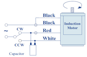 Teco single phase induction motor wiring diagram caferacersjpg teco single phase induction motor wiring diagram asfbconference2016 Gallery