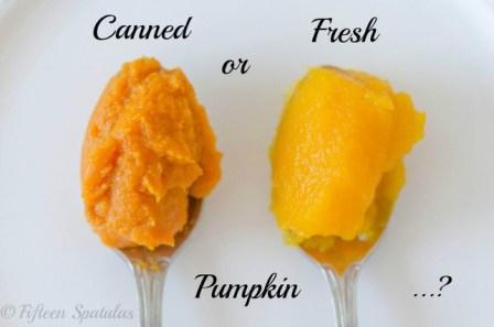 CannedVsFreshPumpkinFifteenSpatulas