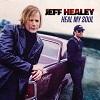 jeff_healey-heal_my_soul