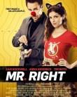 Mr Right 2016 online subtitrat romana full HD