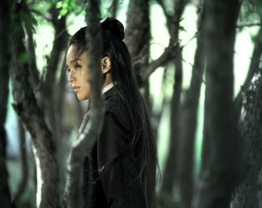 MOVIE REVIEW: The Assassin (2015)