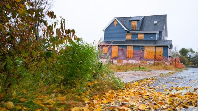DSC03254_Autumn Leaves @72 1000px