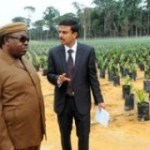 Olam réduit ses investissements au Gabon