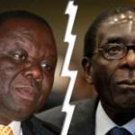 Le Zimbabwe va-t-il voter pour de la vraie croissance ?