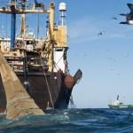 Mauritanie/UE : 60 millions d'euros de redevance dans le nouveau protocole de pêche