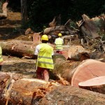 Gabon: l'Etat s'engage à payer ses dettes TVA