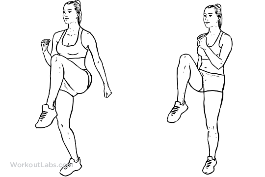 High Knees / Front Knee Lifts | Illustrated Exercise guide ...