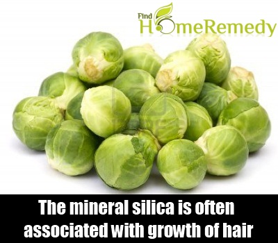 What Foods Naturally Contain Silica
