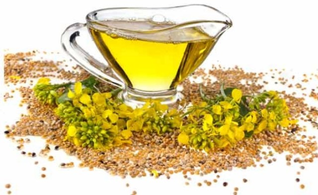 Mustard oil is another effective herbal remedy to cure tinnitus 2