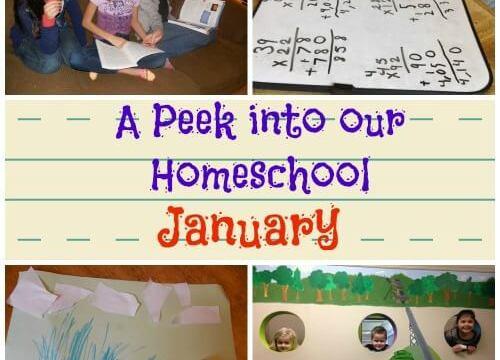A Peek into Our Homeschool ~ January