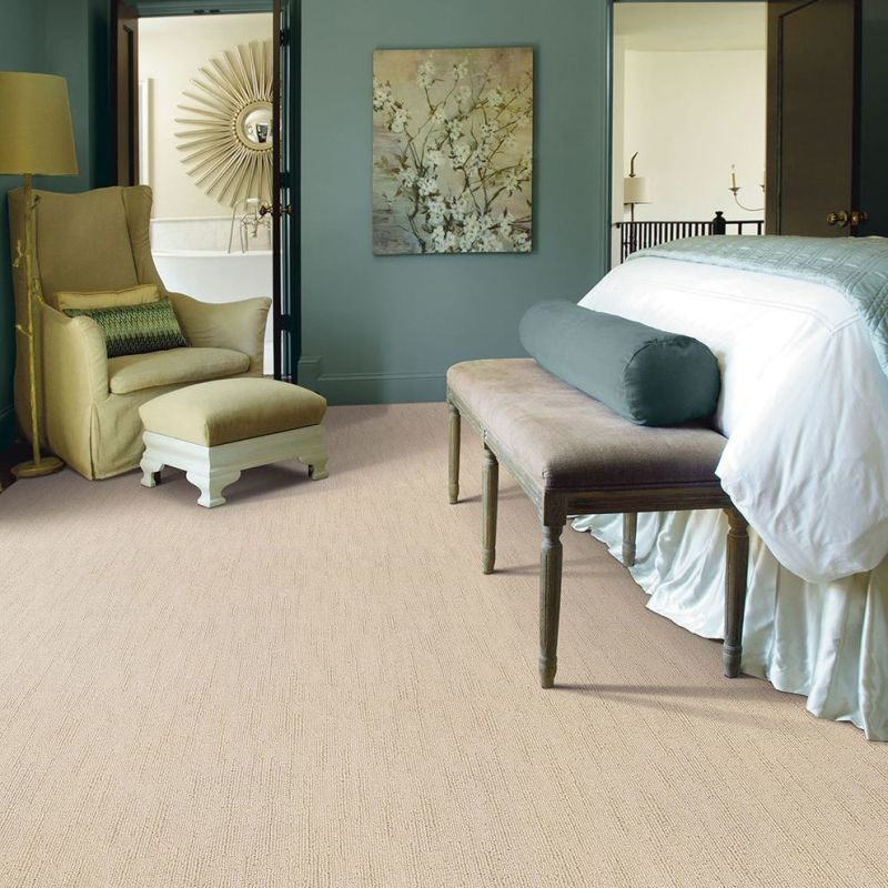 Large Of Shaw Carpet Reviews
