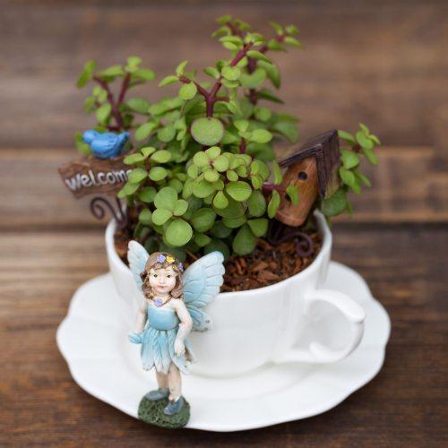 Medium Crop Of The Fairy Gardens