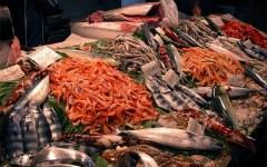 Toscana, pesce e prodotti ittici: maxi sequestro a Cerreto Guidi e Campi Bisenzio