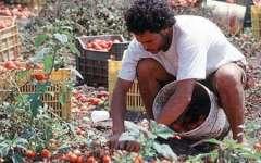 """In Toscana c'è soltanto 1 lavoratore in """"nero"""" su 20"""