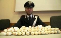 Droga: i carabinieri scoprono traffico Napoli-Arezzo, 12 arresti