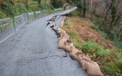 Maltempo, gravi danni all'agricoltura in Toscana