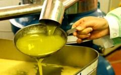 Arezzo, vendevano come biologico l'olio per lampade: denuncia e sequestri in fattoria