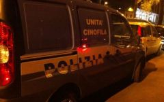 Firenze, vendeva droga al parco giochi di Bellariva: arrestato