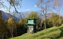 Caccia in Toscana: preapertura  giovedì 1 e domenica 4 settembre 2016. Le specie cacciabili