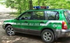 """Pisa: giovanissimo incendiario """"seriale"""" arrestato dal Corpo forestale dello Stato"""