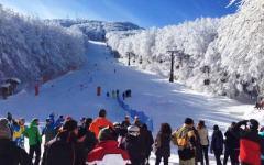 Neve, Toscana folla di sciatori sulle piste: dall'Abetone all'Amiata, dalla Garfagnana alla Lunigiana
