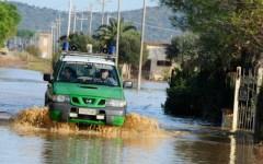Sicurezza ambientale in Toscana: 60 mila controlli della Forestale nel 2014 (Video)