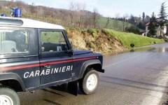 Lucca: cane ucciso in giardino, a Capannori, da un colpo d'arma da fuoco