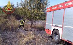 Cavriglia: animali, 5 cani e una decina di piccioni, morti bruciati nell'incendio di un capannone