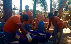 Principina (Gr): nove migranti al lavoro per riparare danni dell'incendio