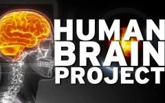 Firenze: primo Open Day italiano di Human Brain Project