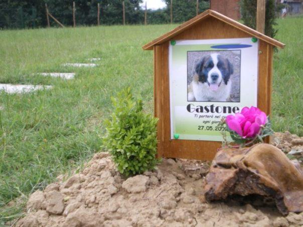 Un lapide in un cimitero per animali