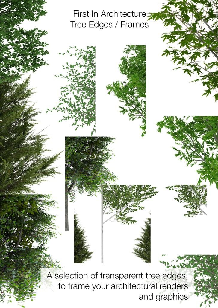 Tree Edges