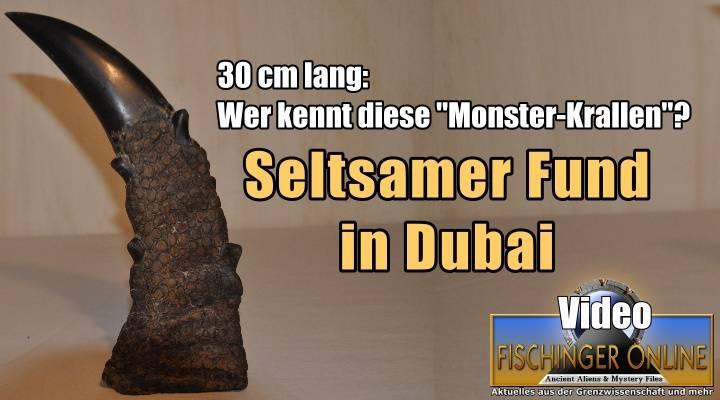 """+++YouTube-Video+++ Riesige """"Monster-Krallen"""" in Dubai gefunden: Sind diese seltsamen """"Drachen-Hörner"""" Fake, Irrtum oder Mysterium?"""