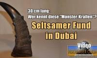 """Die riesigen """"Monster-Krallen"""" von Dubai: Fake, Irrtum oder ein echtes Rätsel? (Bild: L. A. Fischinger)"""