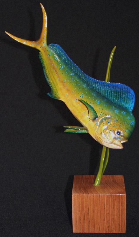 Saltwater Fish Mounts   Fish Replicas   Fish Taxidermy   Fish
