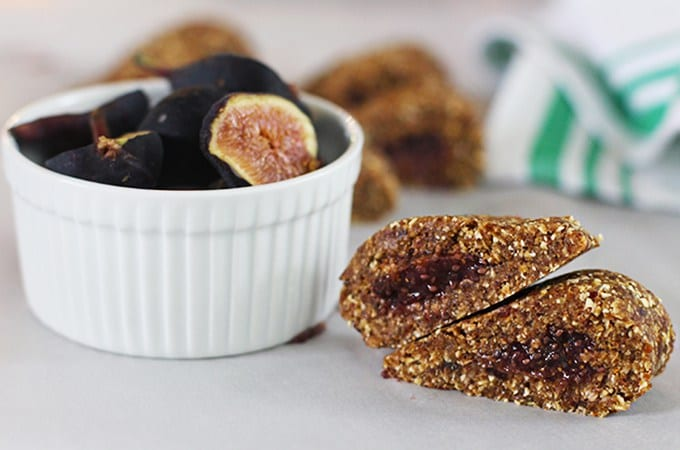fig newton bars featured