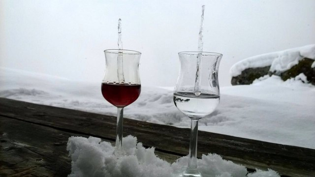 Mirto Rosso e Mirto Bianco on ice