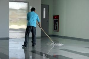 cleaner (1)