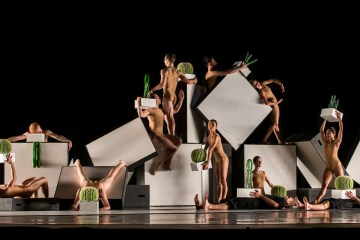 Sydney Dance Company in Cacti. Photo by Peter Greig