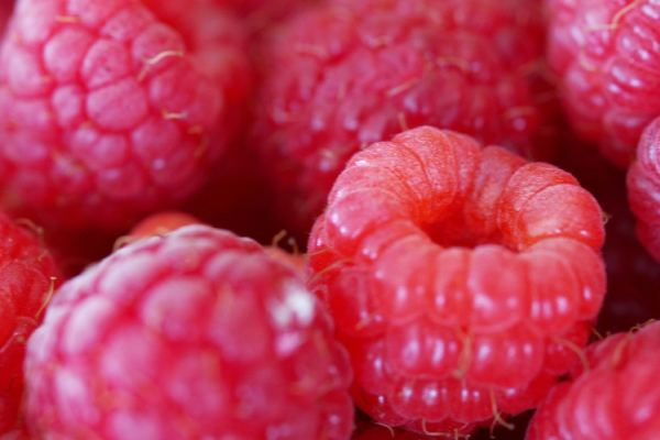 raspberries-01