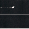 X-ray images of lead (top) and non-lead (bottom) bullets shot into a ballistics gel - Photo Credit: Jeremy Roberts/Conservation Media.