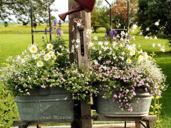 Image result for galvanized metal bucket planter