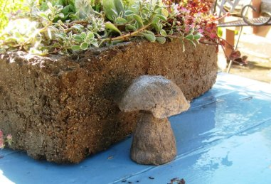 Hypertufa Troughs and Things!