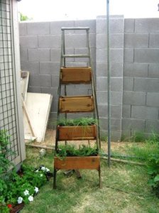 Brian made this ladder and flower box combo from an idea at FMG